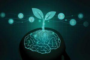 embracing-a-growth-mindset